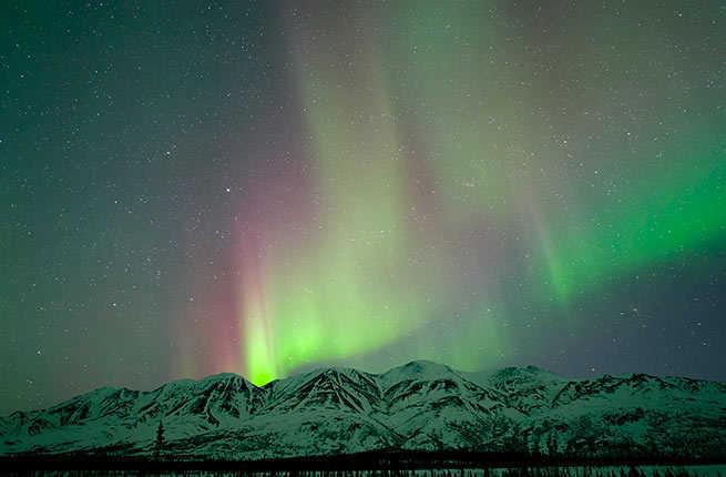 from Caden alaska denali gay national park