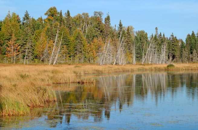 Greenstone Ridge Trail, Isle Royale National Park