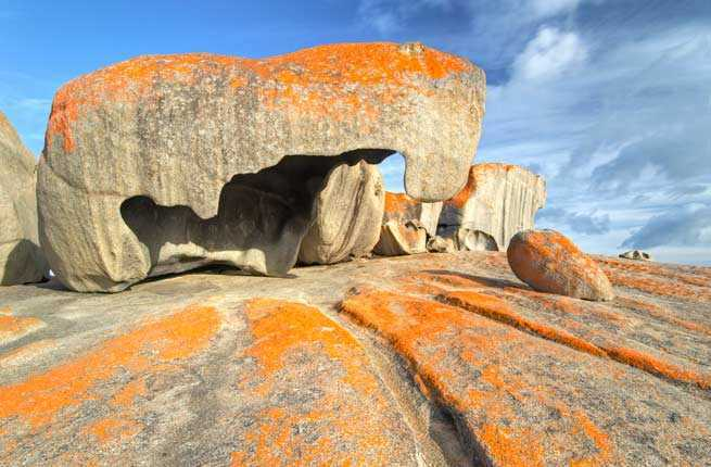 Kangaroo Island Gourmet Food Safari