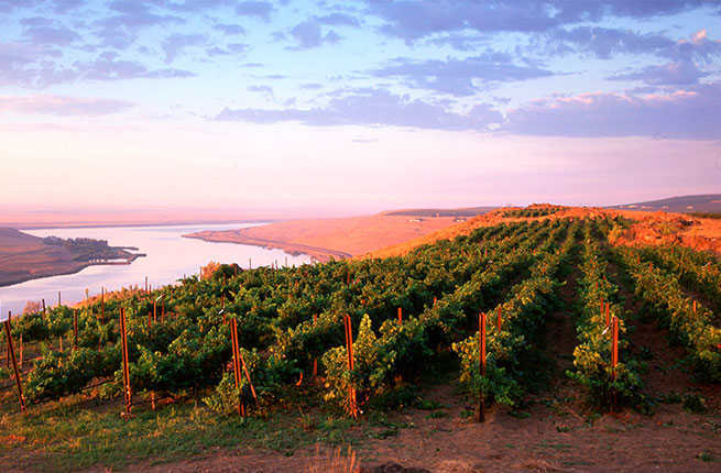 10-undiscovered-pnw-wineries-thumb.jpg