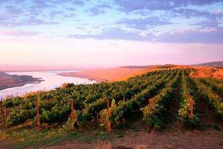 10-undiscovered-pnw-wineries-hero