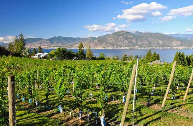 Northwest: Okanagan Valley, British Columbia