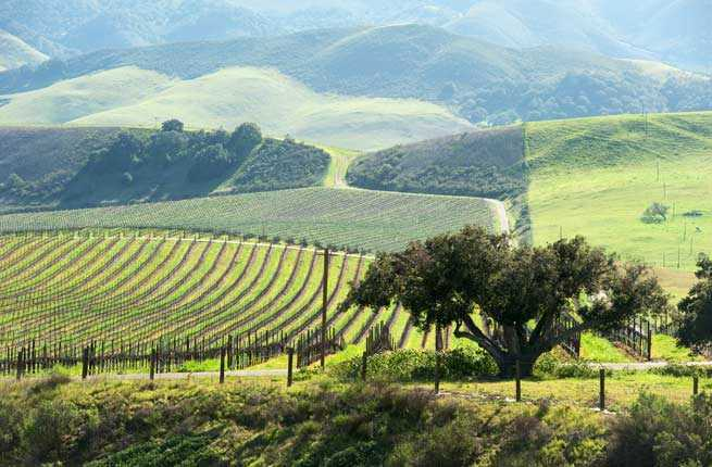 Central Coast, California: Paso Robles