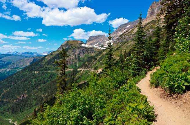 The Highline Trail (Logan Pass to Granite Park Chalet)