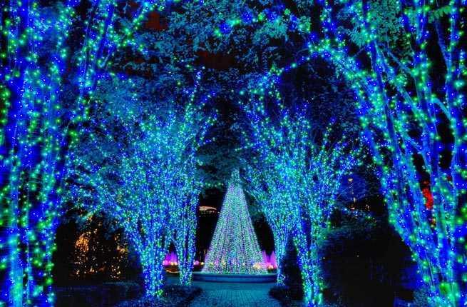 10 botanical gardens with wow factor winter Atlanta botanical gardens christmas lights
