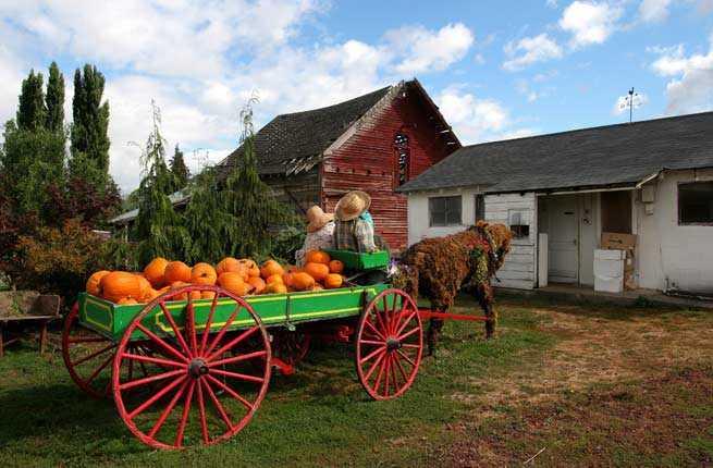 Hood River County Harvest Fest