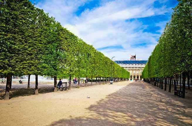 Enjoy the Palais-Royal Gardens