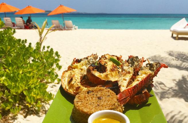 Anguilla lobster