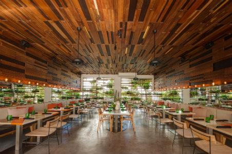 5 Great Seafood Restaurants in Miami