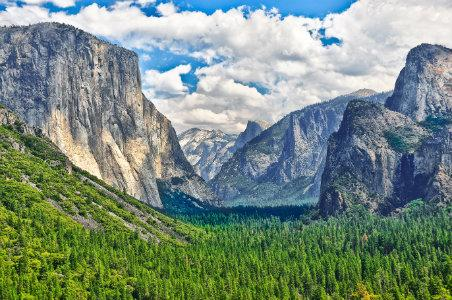 Insider Tips for Visiting Yosemite National Park