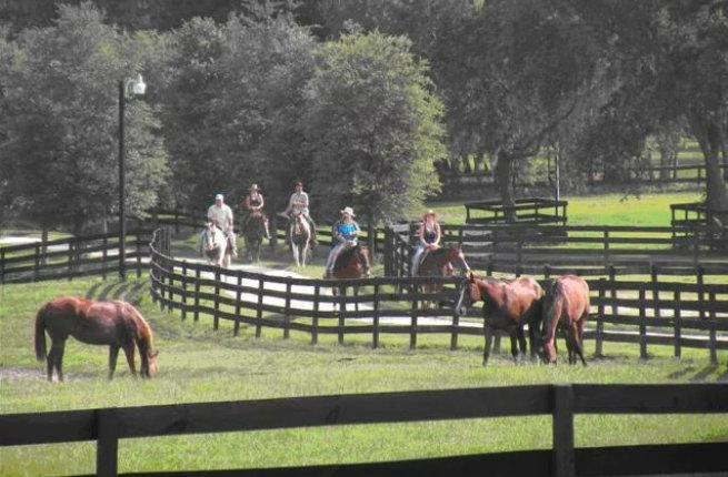 6 Central Florida Ranches That Let You Ride Back In Time