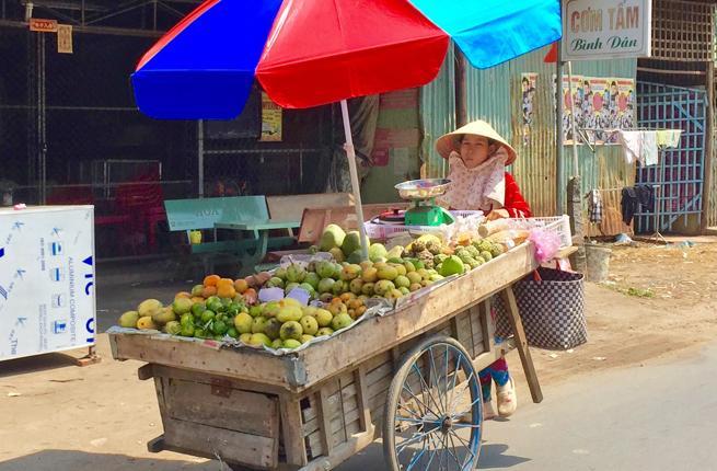 mekong vendor