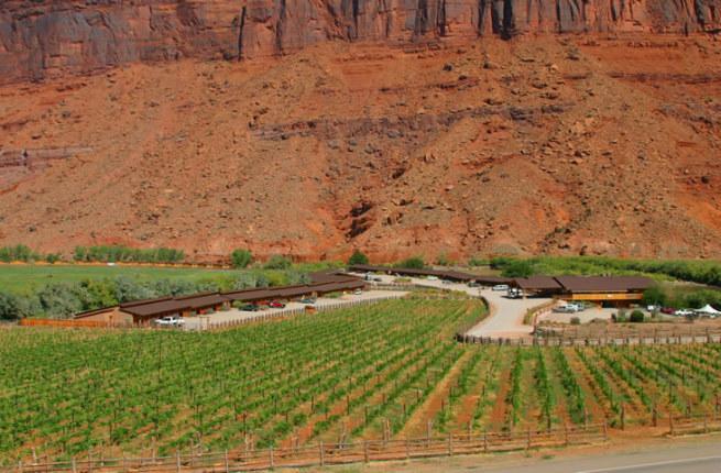 Castle Creek Vineyard, Moab