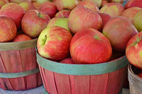 National Harvest Apple Festival
