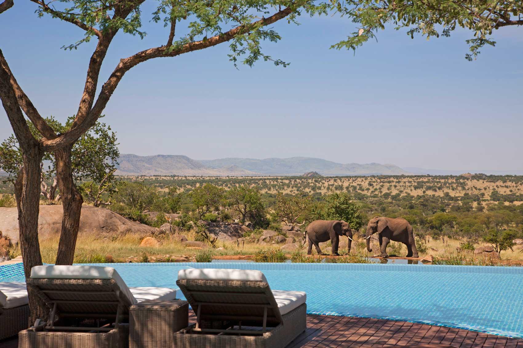 Las piscinas más impresionantes del planeta Four-seasons-safari-lodge-serengeti