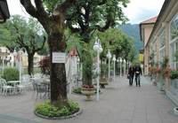 Previous Stop: Bad Ischl