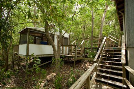 Maho Bay Camps, North Shore