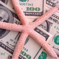 011110_starfishdollars.jpg