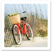 030309-beachbike.jpg