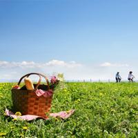 060210_picnic.jpg