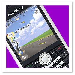 070131_blackberrypearlF.JPG