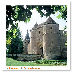 070404_Chateau_d_Ainay_le_VieilF.JPG