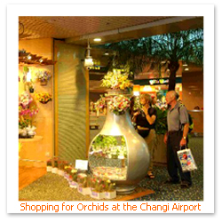 070418_changi_airportF.JPG