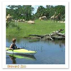 070606_Florida_Mancations_Brevard_Zoo_F.jpg