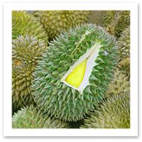 070709_durian.jpg