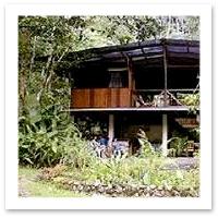 Costa Rica Ecolodge - Bosque del Rio Tigre Lodge