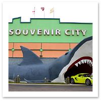 080723_souvenir_chris_watson_flickrF.jpg