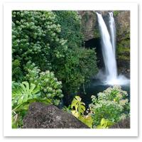 081022_Yenwen-Lu-Hawaii.jpg