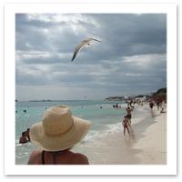 08116-playa-del-carmen.jpg