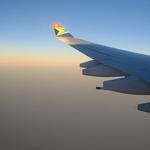 090608--wing.jpg