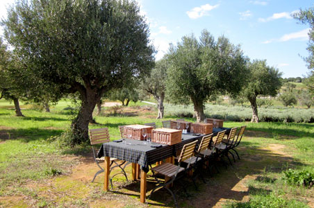 1--Greece-Costa-Navarino-Picnic.jpg