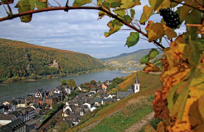 1-Rhine-%28c%29-Avalon-Waterways.jpg