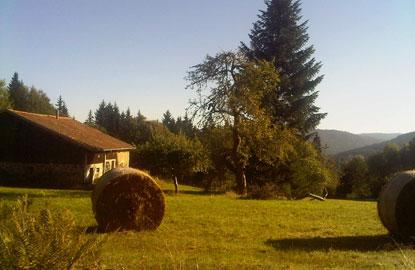 1-farm-near-Les-Bas-Rupts.jpg