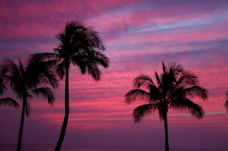 2--Oahu-Sunset.jpg