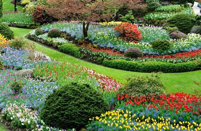 2-butchart-gardens.jpg