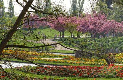 2_parc-floral.jpg