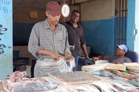 3--fish-market-pc.jpg