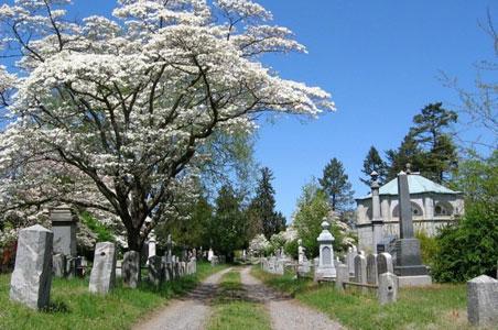 3-Sleepy-hollow-cemetery.jpg