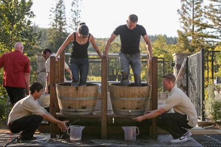 3-francis-ford-coppola-winery-stomp-jpg.jpg