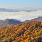 Find Your Perfect National Park for Fall: Foliage Spotlight