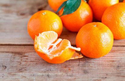 4_citrus.jpg
