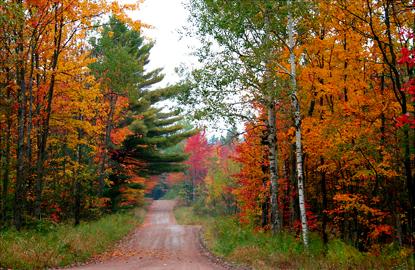 5-Adirondacks.jpg
