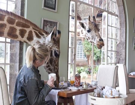 5.%20Giraffe-Manor-kenya.jpg