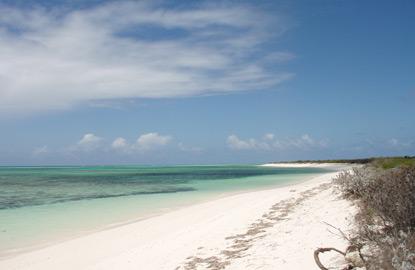 6-Cow-Wreck-Beach-Anegada-British-Virgin-Islands.jpg
