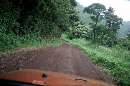 10 Tips for Driving the Hana Highway