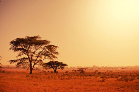 Expatriate Tales: Living in Namibia